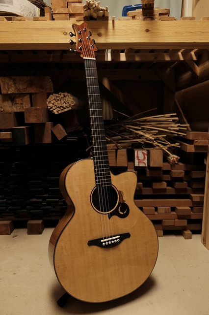 SUGITA KENJI Acoustic Guitars Carrera SJ