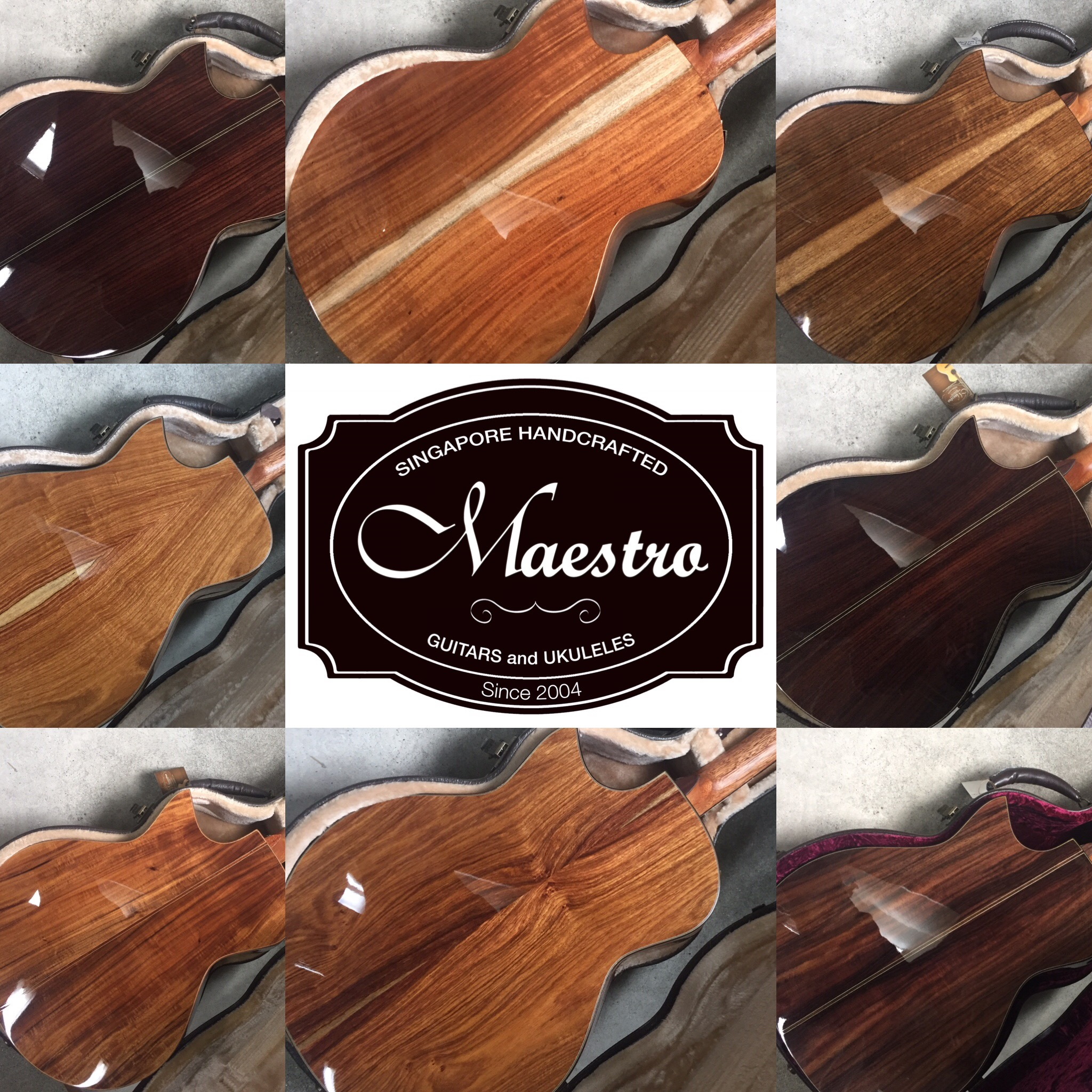 MAESTRO GUITARS CUSTOM series / Private Collection